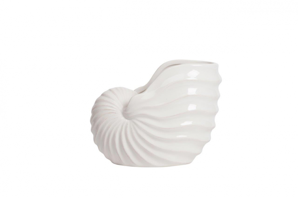 Предмет декора статуэтка ракушка MartimoreСтатуэтки<br>Элемент декора Martimore реалистично изготовлен <br>из керамики в виде ракушки белого цвета <br>с качественной глазурью. Ракушки всегда <br>ассоциируются с морем и веселым летом, поднимут <br>настроение. Поэтому в декоре вашего интерьера, <br>безусловно, найдется место для размещения <br>этого красивого аксессуара.<br><br>Цвет: Белый<br>Материал: Керамика<br>Вес кг: 0,7<br>Длина см: 20,32<br>Ширина см: 11,43<br>Высота см: 16,51