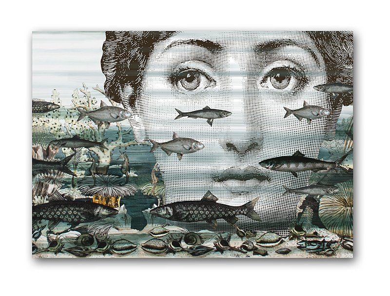 ������ Fornasetti and fish A3, DG-D-PR10