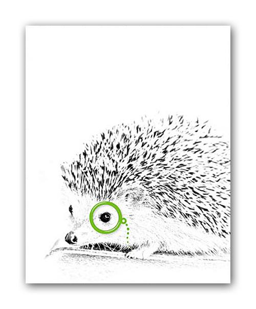 Фото Постер Ёжик и лорнет А3. Купить с доставкой