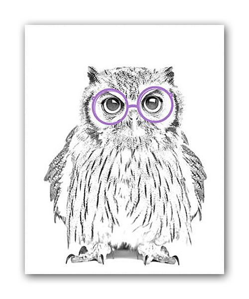 Фото Постер Сова в очках А3. Купить с доставкой