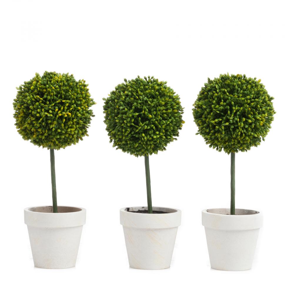 Набор из 3 декоративных растений в горшке Домашний сад<br><br><br>Цвет: Зелёный<br>Материал: ПВХ<br>Вес кг: 0,6<br>Длина см: 7<br>Ширина см: 7<br>Высота см: 21