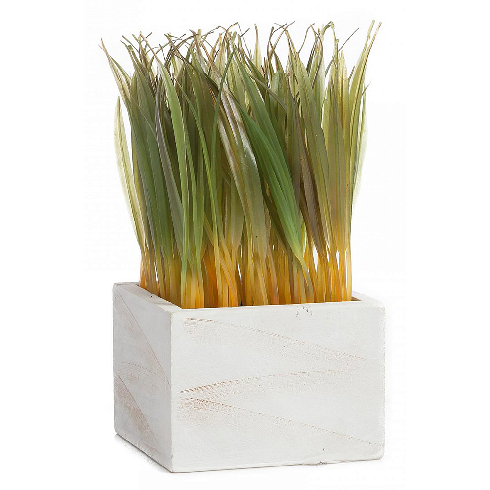 Растение декоративное в горшке KnakiДомашний сад<br><br><br>Цвет: Зелёный<br>Материал: ПВХ<br>Вес кг: 0,55<br>Длина см: 11,5<br>Ширина см: 11,5<br>Высота см: 21,5