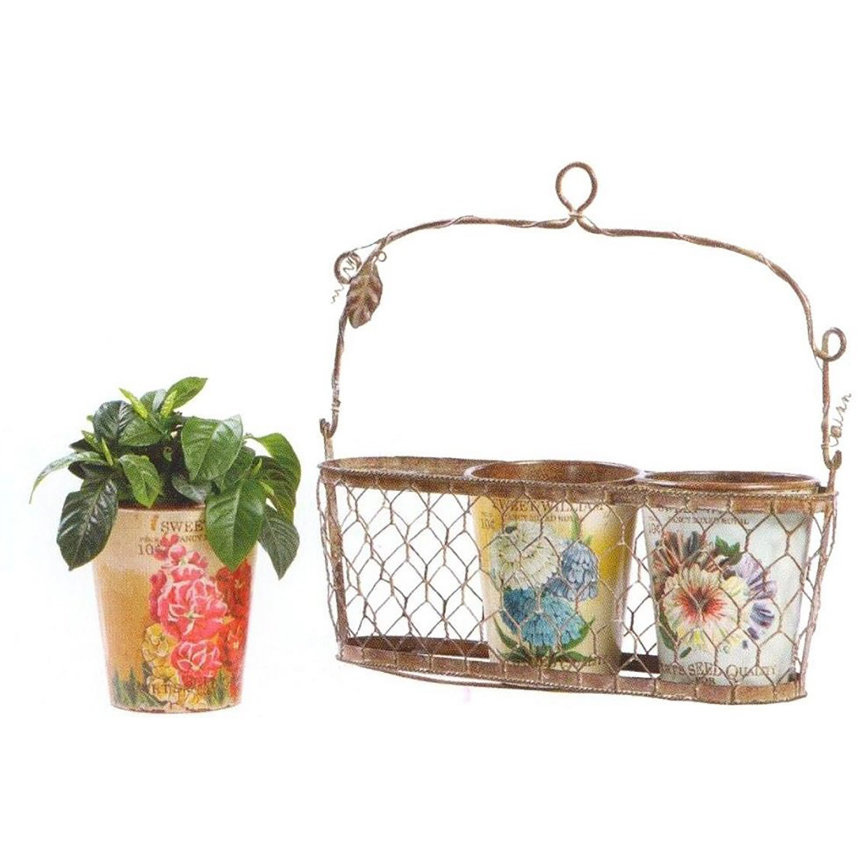 Подвесная корзинка с декоративными горшками Домашний сад<br>Подвесная корзинка с декоративными горшками <br>для цветов Fleurette поможет вам украсить стены <br>вашего дома тремя роскошными растениями <br>на ваш вкус. Подставка декорирована оловянными <br>веточками и листьями, горшки раскрашены <br>великолепными рисунками с изображением <br>цветов. Это поможет наполнить ваш дом уютом <br>и теплом, добавить в него яркости и роскоши. <br>Аксессуар превосходно будет смотреться <br>как на кухне, так и в любой другой комнате. <br>Высота горшка 14 см.<br><br>Цвет: Разноцветный<br>Материал: Металл<br>Вес кг: 0,4<br>Длина см: 30<br>Ширина см: 30<br>Высота см: 10